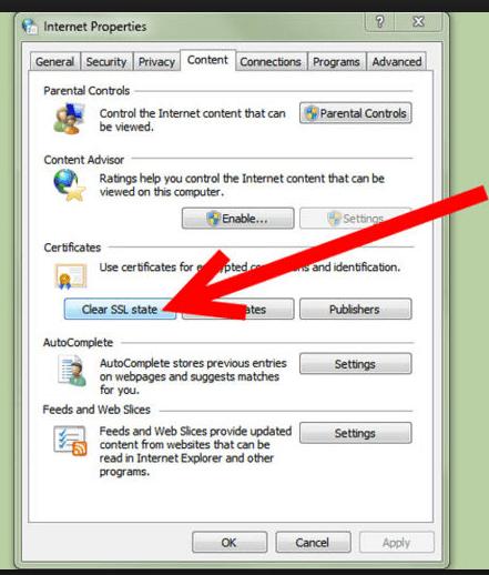 Clearing the Internet SSL state - Screenshot
