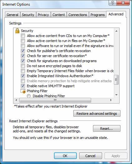 Check Internet Explorer Settings - Screenshot